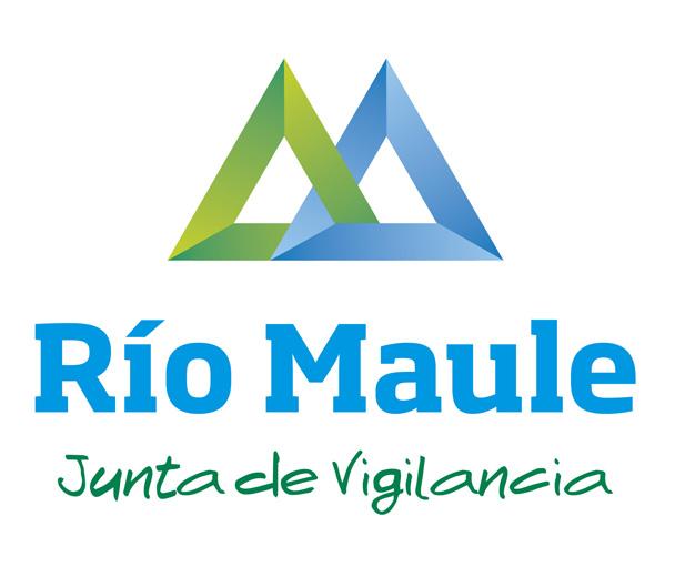 Declaración pública de Chillán